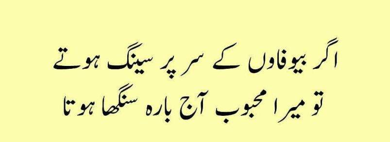 20 Funny Quotes In Urdu Articles Crayon
