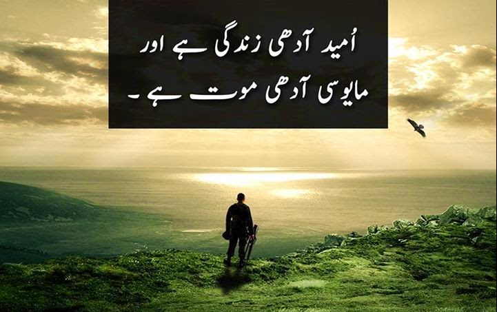 20 Best Quotes In Urdu Inspiration Crayon