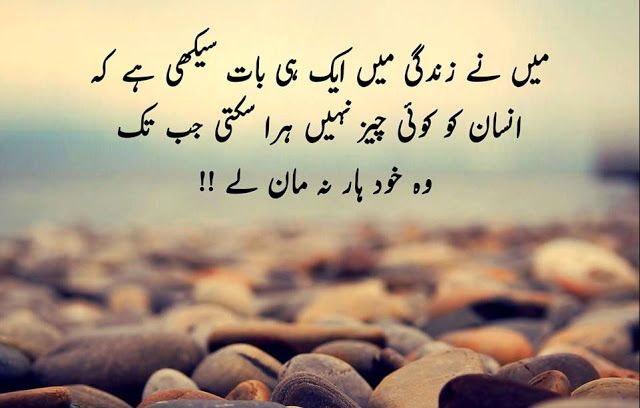 20 Best Motivational Quotes In Urdu Inspiration Crayon