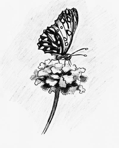 9967cdb7c Butterfly and Flower Tattoo Design - Unique Butterfly Tattoos ...
